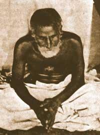 Gaura-Kisora